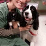 Caring For Animals Isn't What I Do, It's Who I Am