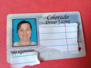 Sara's driver's license photo